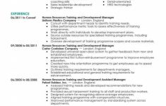 Amazing Human Resources Resume Examples | Livecareer